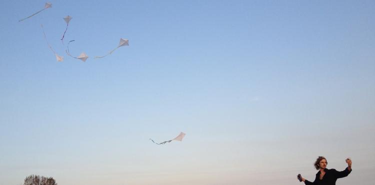 Kite Flock